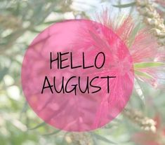 Seasons Months, Months In A Year, August Pictures, Assumption Of Mary, Hello August, Honeymoon Hotels, Wedding Countdown, Tumbler Photos, Spa Day