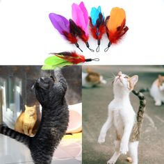 Colorful New Quality Fishing Pet 5 REFILLS For Bird Feather Wand Cat Toy Toys Refill Home Drop Shipping