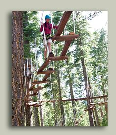 Treetop Adventure Park and Ropes Course - Granlibakken - Tahoe City, CA