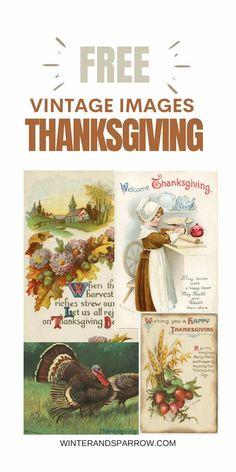 Free Vintage Thanksgiving Images + Gratitude Printable PDF