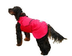 Dog Jacket Dog Coat Custom Dog Raincoat by PepperPetWear on Etsy, €35.00