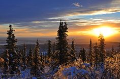 View of the Tanana Valley from Ester Dome. Fairbanks, Alaska