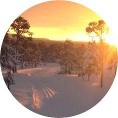 Start ved parkering Abrahallen ved Stavsjøen/Sveberg. Turen følger lysløype over til Jervskogen skisenter der man kan gå en runde i lysløypa før man går tilbake til Svebrg. Totalt blir turen da ca 21 km. Klikk på bildet for full beskrivelse av skituren! Skiing, Celestial, Tips, Outdoor, Ski, Outdoors, Outdoor Games, The Great Outdoors, Counseling