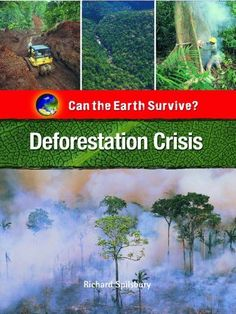 Deforestation Crisis (Can the Earth Survive?) - http://www.yourglt.com/deforestation-crisis-can-the-earth-survive/?utm_source=PN&utm_medium=http%3A%2F%2Fwww.pinterest.com%2Fpin%2F368450813235896433&utm_campaign=SNAP%2Bfrom%2BGreening+Your+Home
