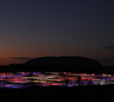Absolutely magnificent #light #installation Field of Light by Bruce Munro