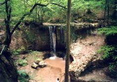 The Louisiana Hiking Club - Trail Information - Clark Creek Natural Area