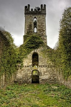 Ancient, County Wicklow, Ireland photo via brenna   ..rh