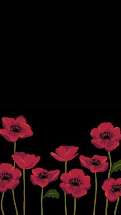 iphone wallpaper kate spade 55 New Ideas Screen Savers Iphone Kate Spade Flower Background Wallpaper, Flower Phone Wallpaper, Cute Wallpaper Backgrounds, Cellphone Wallpaper, Flower Backgrounds, Pretty Wallpapers, Mobile Wallpaper, Interesting Wallpapers, Background Ideas