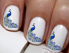 20 pc Peacock Feathers Peacock Nail Art Nail Decals Nail Stickers Lowest Price On Etsy #cg023na