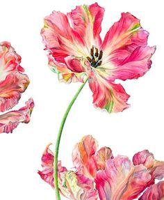 http://www.jonathancooper.co.uk/artists/42-rosie-sanders/works/487/