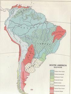 South America Vegetation MapS