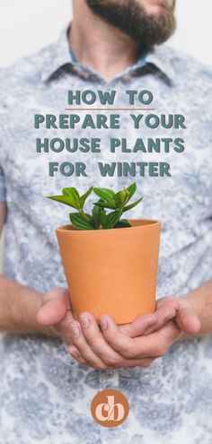 Winter can be hard on house plants. If you're a new plant parent, or just looking for good tips, you've come to the right place. I'm going to share with you my top 5 tips on How To Prepare Your House Plants For Winter! House Plants Decor, Plant Decor, Outdoor Plants, Outdoor Gardens, Indoor Gardening, Garden Plants, Gardening Tips, Witch's Garden, Garden Ideas