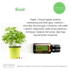 olejek z bazyli. na jesienny ból głowy;) Osho, Health, Health Care, Salud