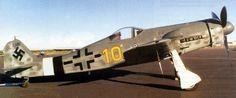 Focke-Wulf Fw 190D fighter.