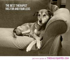 The Best Therapist