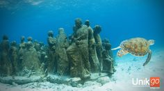 Cancun underwater museum (MUSA). Musa which stands for Museo Subacuatico de Arte (Museum of Underwater Art and Scuplture) is a joint effort by the Mexican Government and international artist Jason Taylor to combine art and conservation in an effort to create a new diving attraction and remove pressure from the nearby coral reefs.