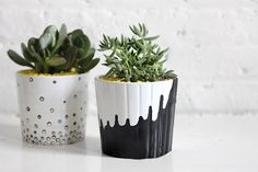 Brit, Painted Plant Pots, Paper Leaves, Christmas Canvas, Fig Tree, Terracotta Pots, Fruit Trees, Merry And Bright, Planting Succulents