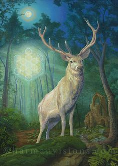 White Stag painting - by Bruce Harman