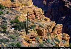Fish Creek Canyon Picture 020 - February 16, 2015 from Superstition Wilderness (Arizona) Picture