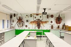 Southwark College's Science Lab ... I wish my Science Lab looked like this when I was at school!