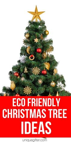 4 Easy Steps For Developing A Sunroom Eco-Friendly Christmas Tree Ideas Christmas Decorating Eco-Friendly Holiday Decorating Eco-Friendly Decorating Holiday Decorating, Christmas Decorations, Christmas Tree, Christmas Ideas, Wrapping Ideas, Gift Wrapping, Best Friend Christmas Gifts, Experience Gifts, Gifts For Mum