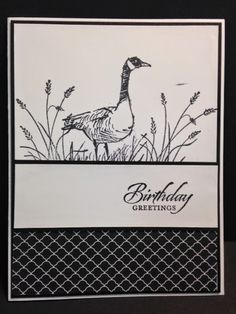 Wetlands, Masculine Birthday Card, Stampin' Up! Rubber Stamping, Handmade Cards
