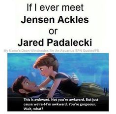 This would be exactly what would happen. And so, as much as I would love to meet them, (especially Jensen) if I saw them in public I would probably hide... and knock over a display or something in the process of hiding.