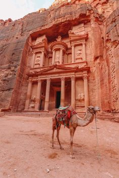 What Is It Like To Visit Petra In Jordan For The First Time? (18)