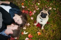 Ottawa engagement and dog photographer, photos by elizabethandjane photography