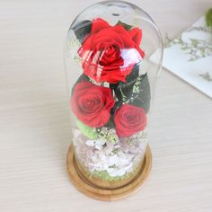 The Glass Cover Preserved Rose Flower Immortal Red Roses for Valentine Mother's Day Home Decoration Romantic #Affiliate