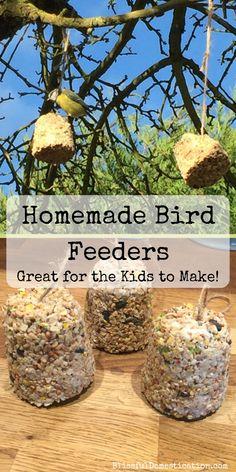 10 Best Winter Garden Ideas For Kids – Growing Healthy Kids Garden Crafts For Kids, Diy For Kids, Garden Ideas, Bird Paper Craft, Bird Crafts, Bird Feeder Craft, Easy Bird, Large Flower Pots, Homemade Bird Feeders
