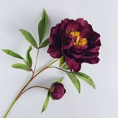 Peony from leftovers. (I'll fight to the death for whatever is left of this deep garnet color 😉- it has turned out to be quite popular!)) And the mulberry paper is turning into a 'forever' thing too. Celadon and garnet . Fake Flowers, Diy Flowers, Fabric Flowers, Beautiful Flowers, Flower Wreaths, Crepe Paper Flowers Tutorial, Tissue Paper Flowers, Paper Peonies, Handmade Flowers