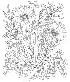 Cynthia Emerlye, Vermont artist and kirigami papercutter: Hemp & Petunias - an adult coloring page for Benevolence Bound Space Coloring Pages, Coloring Pages For Grown Ups, Free Adult Coloring Pages, Coloring Pages To Print, Coloring Books, Coloring Stuff, Leaf Coloring, Coloring Sheets, Mandalas