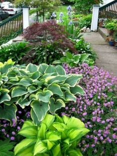 Front Yard Landscaping Ideas - Swipe these inexpensive as well as very easy landscape design suggestions for a stunning backyard. Cheap Landscaping Ideas, Front Yard Landscaping, Courtyard Landscaping, Farmhouse Landscaping, Landscaping Software, Landscaping Plants, Modern Landscaping, Deer Resistant Landscaping, Landscaping Contractors