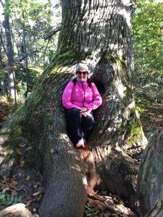 Iloinen Venla puumajassaan