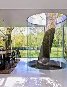 This solves a problem I've always had with living tree houses- keeping the interior climate controlled without restricting the growth of the tree