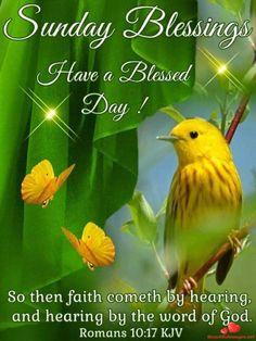 Sunday Blessings ~~J~ Romans Blessed Sunday Morning, Sunday Morning Quotes, Sunday Love, Happy Sunday Quotes, Blessed Quotes, Morning Greetings Quotes, Good Morning Happy, Morning Blessings, Have A Blessed Day