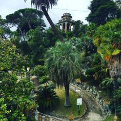 Things you need to see and do in Chiavari — Living in Italian Shop Facade, Seaside Resort, Antique Market, Kew Gardens, Genoa, Group Tours, Fishing Villages, Days Out, Day Trip