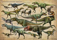 tyrannosaurs by atrox1.deviantart.com on @DeviantArt