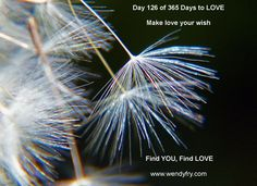 Day 126 Make Love Your Wish.  •	When I look through the eyes of love, how do I choose to see myself physically today? •	When I feel from the heart of love, how can I be more loving to myself today? •	When I see the love and beauty all around me I start to notice..... •	When I focus on all that is possible for me I..... •	Today, I realise that when I choose love I..... •	Today, tomorrow and the next day I commit to..... •	Now and for always I..... •	I believe that.....