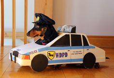 Wiener Dog Police Department