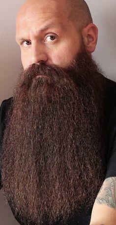 Bald With Beard, Facial Hair, Beards, Close Up, Celebrities, People, Image, Celebs, Bald Head With Beard