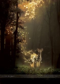 that's the thing with magic. You've got to know it's still here, all around us, or it just stays invisible for you.    ~Charles de Lint
