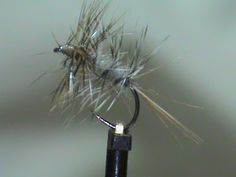 Hook: Std Dry #14 - #20 Thread: Tan Tail: Ginger Hackle Body: Beaver Body…