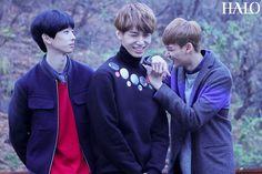 HALO 헤일로 Heecheon, Jaeyong & Inhaeng