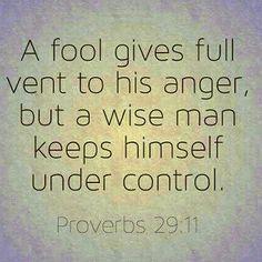 Proverbs 29:11