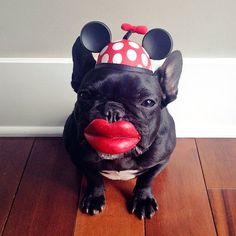 Minnie Mouse????-Adorable