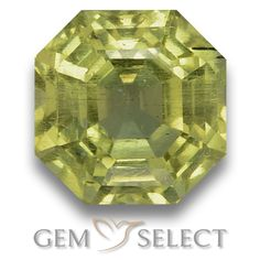 GemSelect features this natural untreated Apatite from Madagascar. This Green Apatite weighs 3.8ct and measures 8.5 x 8.4mm in size. More Asscher Cut Apatite is available on gemselect.com #birthstones #healing #jewelrystone #loosegemstones #buygems #gemstonelover #naturalgemstone #coloredgemstones #gemstones #gem #gems #gemselect #sale #shopping #gemshopping #naturalapatite #apatite #greenapatite #octagongem #octagongems #greengem #green Green Gemstones, Loose Gemstones, Natural Gemstones, Buy Gems, Gem Shop, Asscher Cut, Madagascar, Gemstone Colors, Shades Of Green