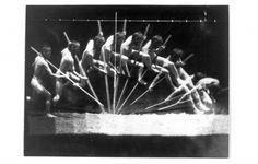 Animal - Locomotion - Photo - Pole vaulter