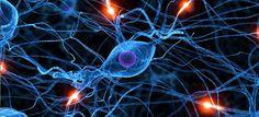 """""""Inteligencias Múltiples. Gardner, Goleman y Angélica Olvera"""" Un recorrido por la historia de las Inteligencias múltiples: La estructuración de Gardner, las aportaciones de Goleman y la nueva mirada de Angélica Olvera. Además, de una entrevista de Redes para la Ciencia al mismo Howard Gardner"""